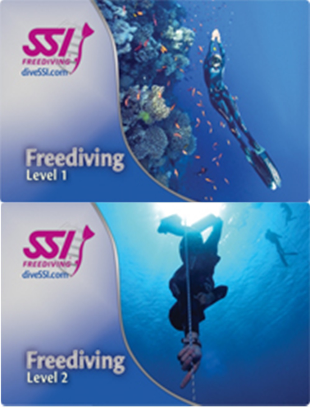 KIT Freediving level 1&2