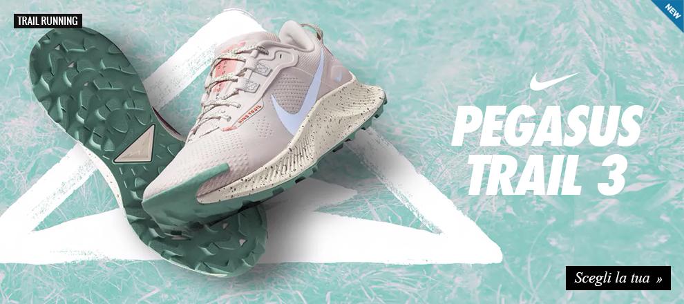 Nike pegasus trail running