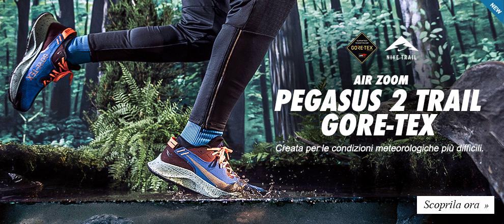 Nike Pegasus 2 Trail Gore tex