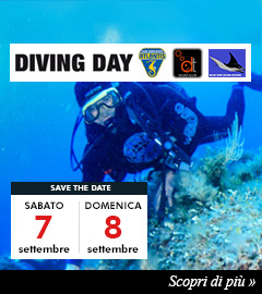 Diving Day