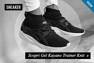 Asics Kayano Trainer New